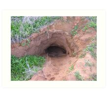 Southern Hairy-nosed Wombat Burrow Art Print
