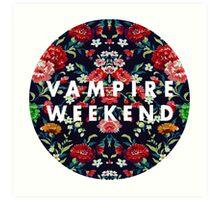 Vampire Weekend Mirrored Art Print