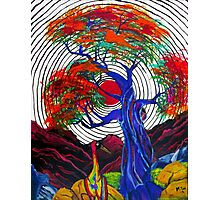 Zen Crane Photographic Print