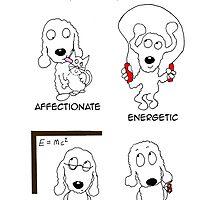 Bedlington Terrier by archyscottie