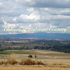 Cabonne Country by Joy Engelman