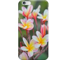 Hot Pink Plumeria Bush Queen Duvet iPhone Case/Skin