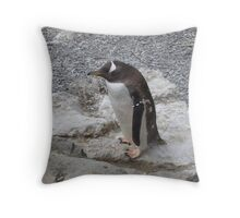 penguin on the rocks Throw Pillow