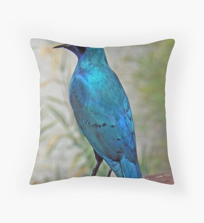 Glossy Starling  (III) Throw Pillow