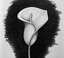 1 Hour Sketch - Lily by SD 2010 Photography & Equine Art Creations
