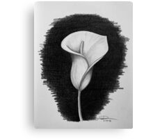 1 Hour Sketch - Lily Canvas Print