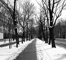 Winter in Vienna by LenH