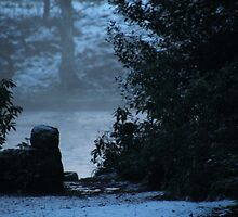 Beyond the wall ... by LynnEngland