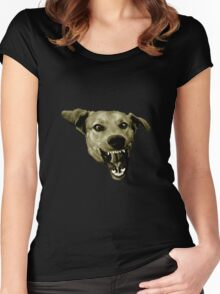 Thorgal Women's Fitted Scoop T-Shirt