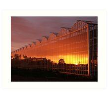 Glasshouse Sunset  Art Print