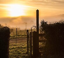 Morning Gate by Andrew Jeffries