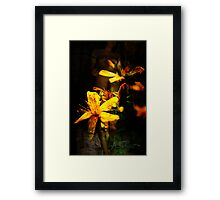 Lighting Framed Print