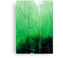 Psychmaster Spring Brush 101 Canvas Print
