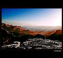 Grand Canyon Sunrise1 by Ron Trinca