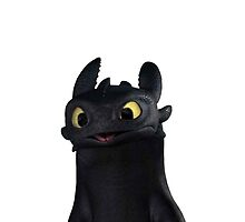 Toothless by RebeccaWindas