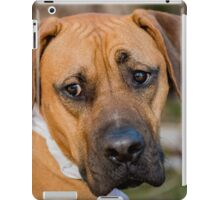 I am easily distracted iPad Case/Skin