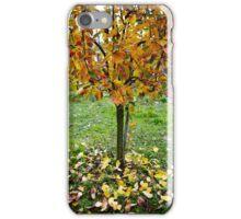 Apple tree in the autumn iPhone Case/Skin