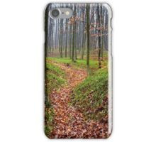 Forest alley iPhone Case/Skin