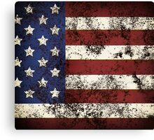 American I Canvas Print