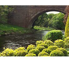 Bushes , Bridge and River Photographic Print