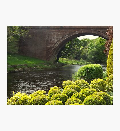 Bushes , Bridge and River Photographic Print