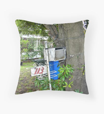 Waiting for the News Throw Pillow