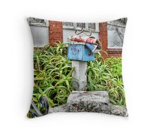 Junk Mail is Welcome! Throw Pillow