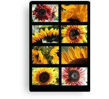 Sunflower Collage 2 Canvas Print