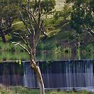 Cullen Bullen Railway Dam 3 by Deborah McGrath