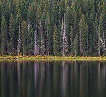 Canoeing on Piney Lake by Luann wilslef