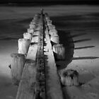 Groyne and Shadow - Pawleys Island, SC by Eric Cook