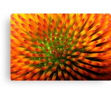 Nature's Candy Corn Canvas Print