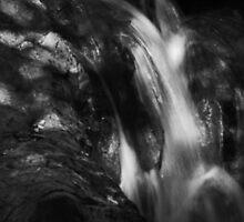 Spring Creek falls (Gaussian B&W) by Lenny La Rue, IPA