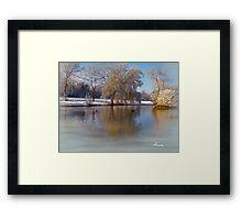 Cannon Hill Park Framed Print