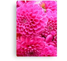 Pink Candy Canvas Print