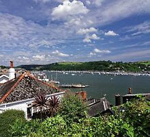 Dart Marina Viewed From Clarence Hill Road, Dartmouth, Devon, UK by atomov