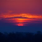 Skyscapes by Jim Caldwell