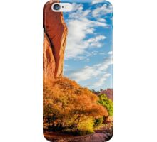 Garden Of The Gods Colorado Springs iPhone Case/Skin