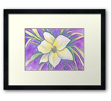 Flagler Beach Daylilly Framed Print