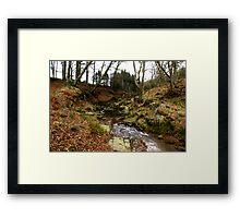 River Rye Framed Print