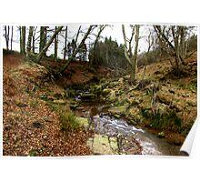 River Rye Poster
