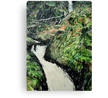 Cader Idris Canvas Print
