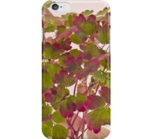 Colorful Wild Columbine Leaves iPhone Case/Skin