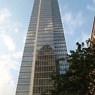 From one tall building to another... by cfam