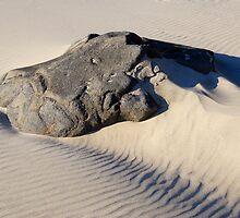 Questing the Sandy Seas by Lynda Berlin