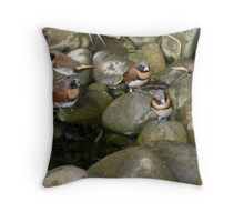 Mannikin Finches Throw Pillow