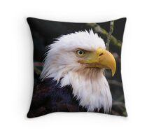 Portrait Of An Eagle III  Throw Pillow