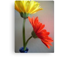 Primary Colors Canvas Print