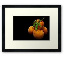Orange Peaches Framed Print