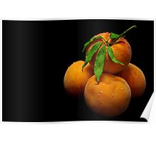 Orange Peaches Poster